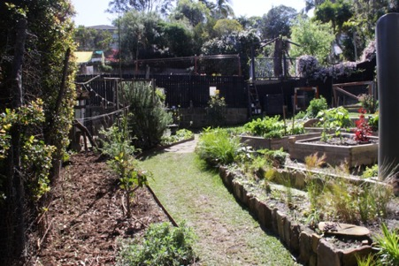Lane Cove – Chris and Desilee's garden