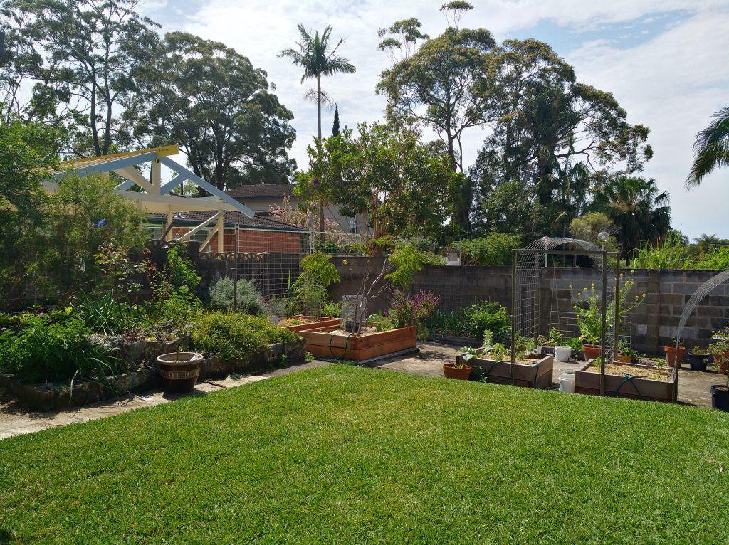 Sydney Edible Garden Trail - Killarney Heights edible garden