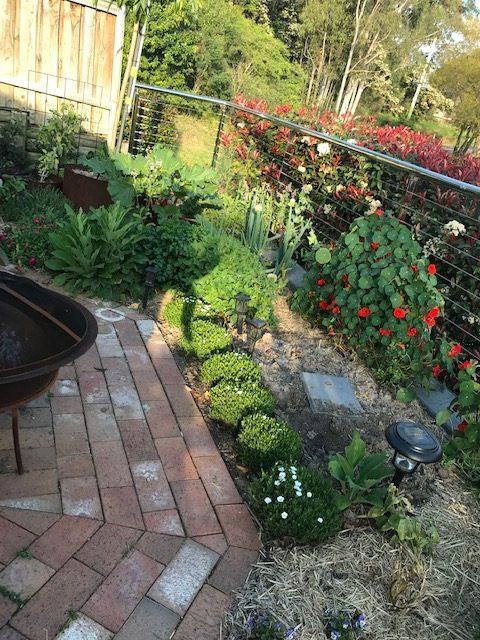 Sydney Edible Garden Trail - West Pennant Hills garden