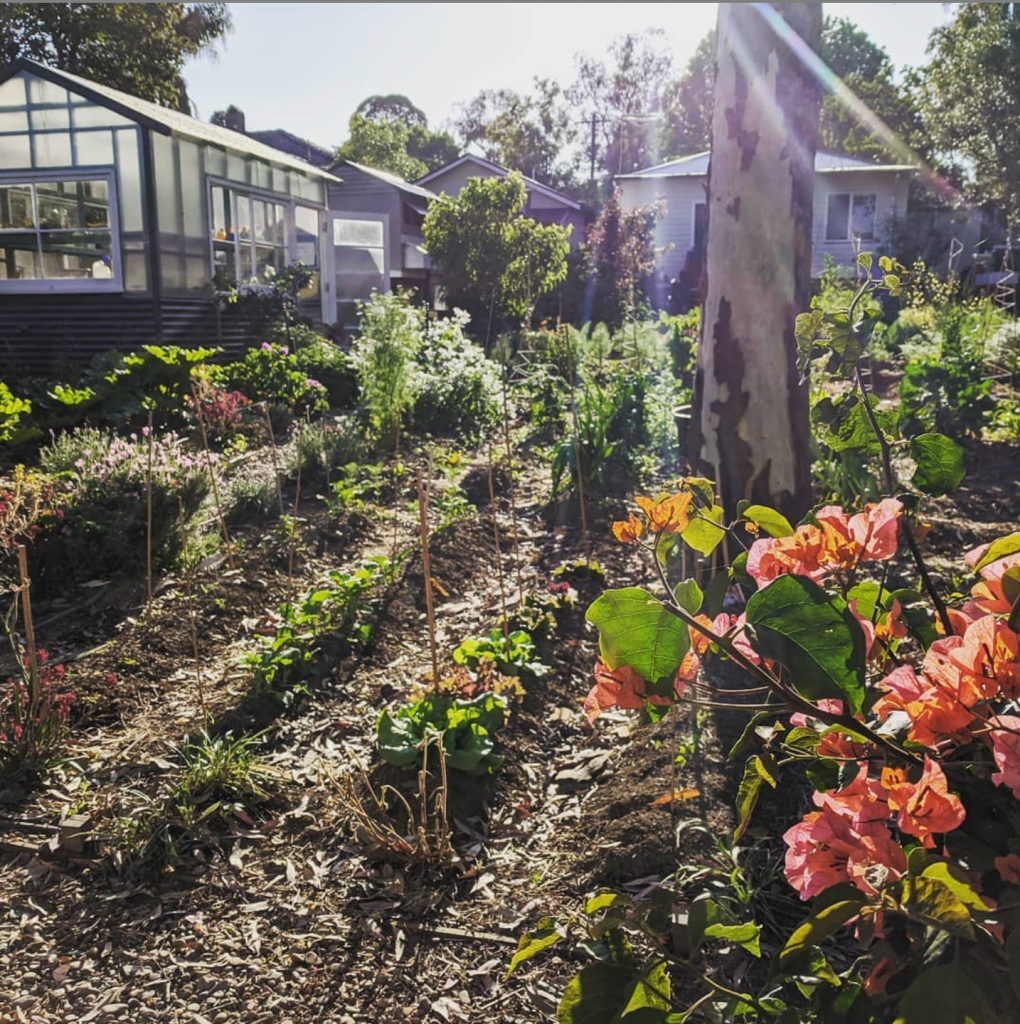 Sydney Edible Garden Trail - Highland urban farm
