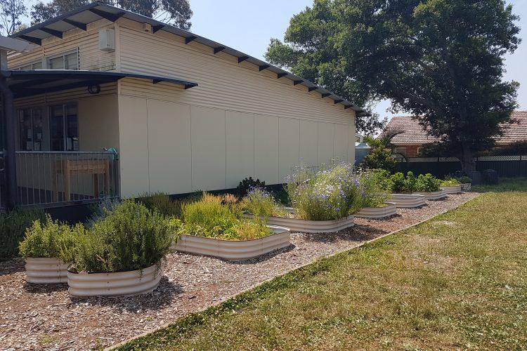 Lane Cove North – Mowbray Public School garden