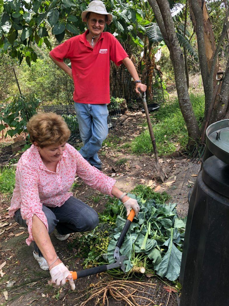 Sydney Edible Garden Trail - Warners Park community garden