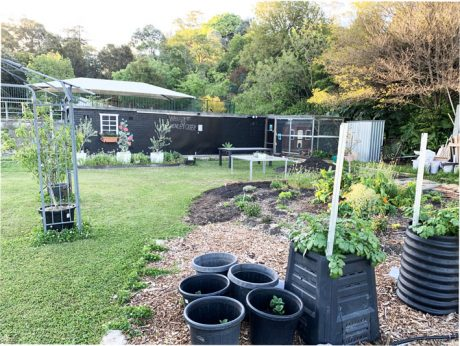 Sydney Edible Garden Trail - Henley Green community garden