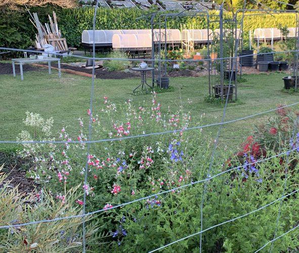 Henley Green Community Garden