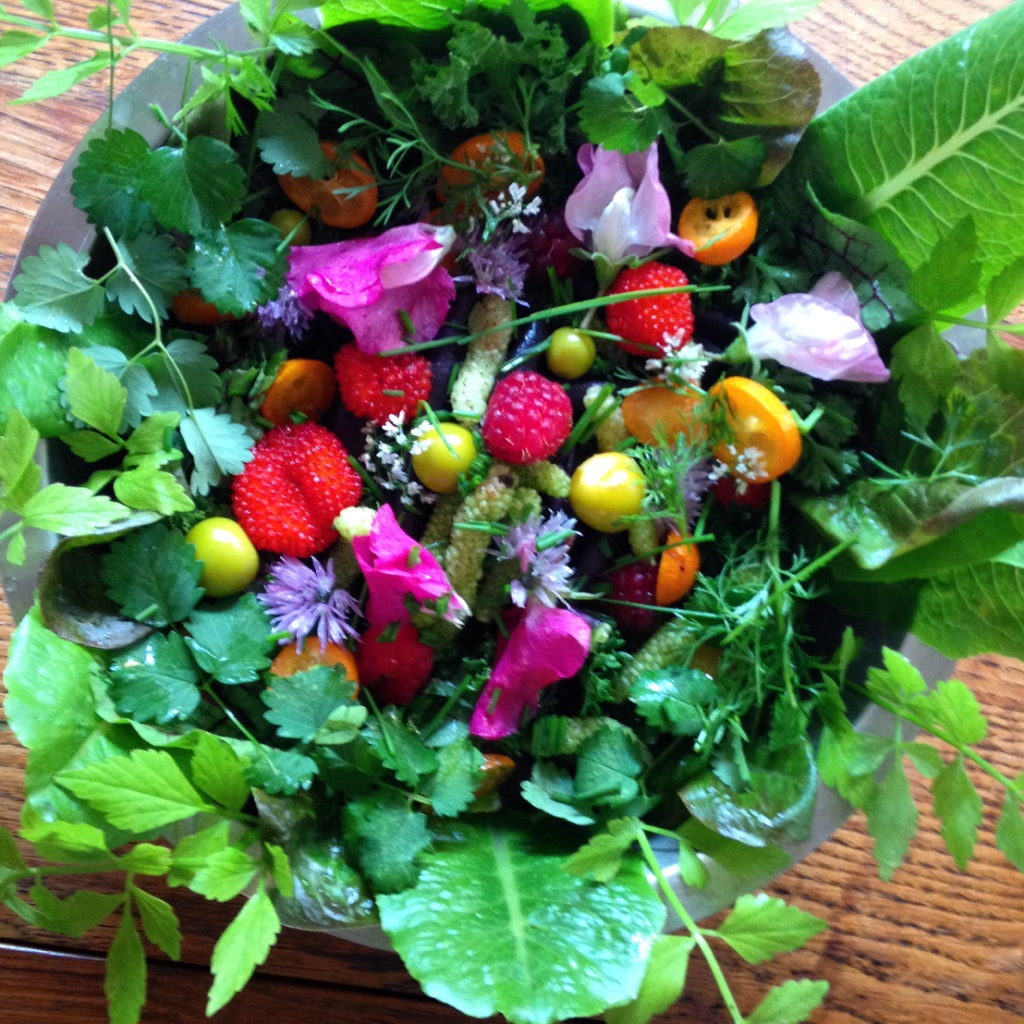 Sydney Edible Garden Trail - a bowl of edibles