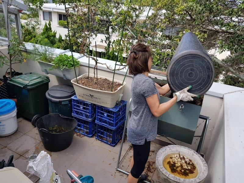 composting up on the rooftop