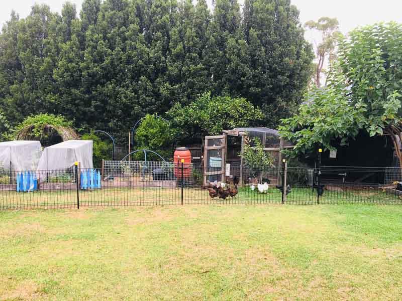 Sydney Edible Garden Trail - edible garden