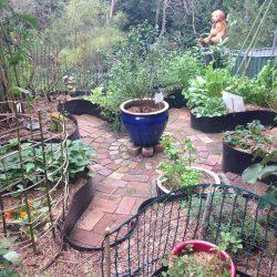 Mandala Sydney Edible Garden Trail