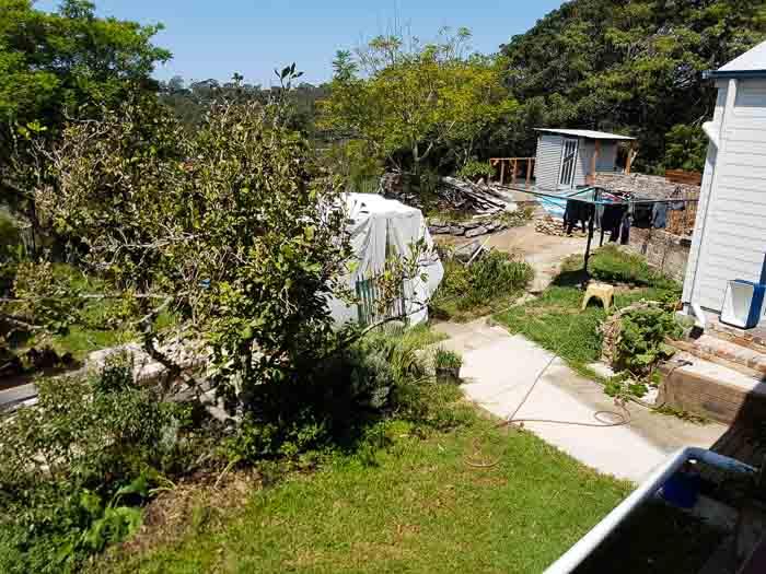 Sydney Edible Garden Trail - Mount Colah garden