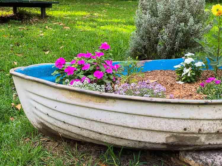 Sydney Edible Garden Trail - Newport Community Garden