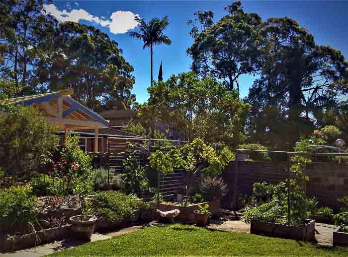 Sydney Edible Garden Trail