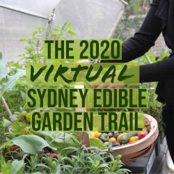 the 2020 Virtual Sydney Edible Garden Trail